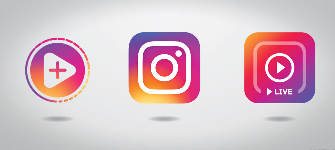 Instagram Stories vs. Instagram Feed: What to Post and Where.